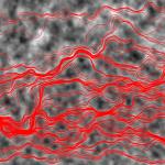 Flow and transport through heterogeneous media